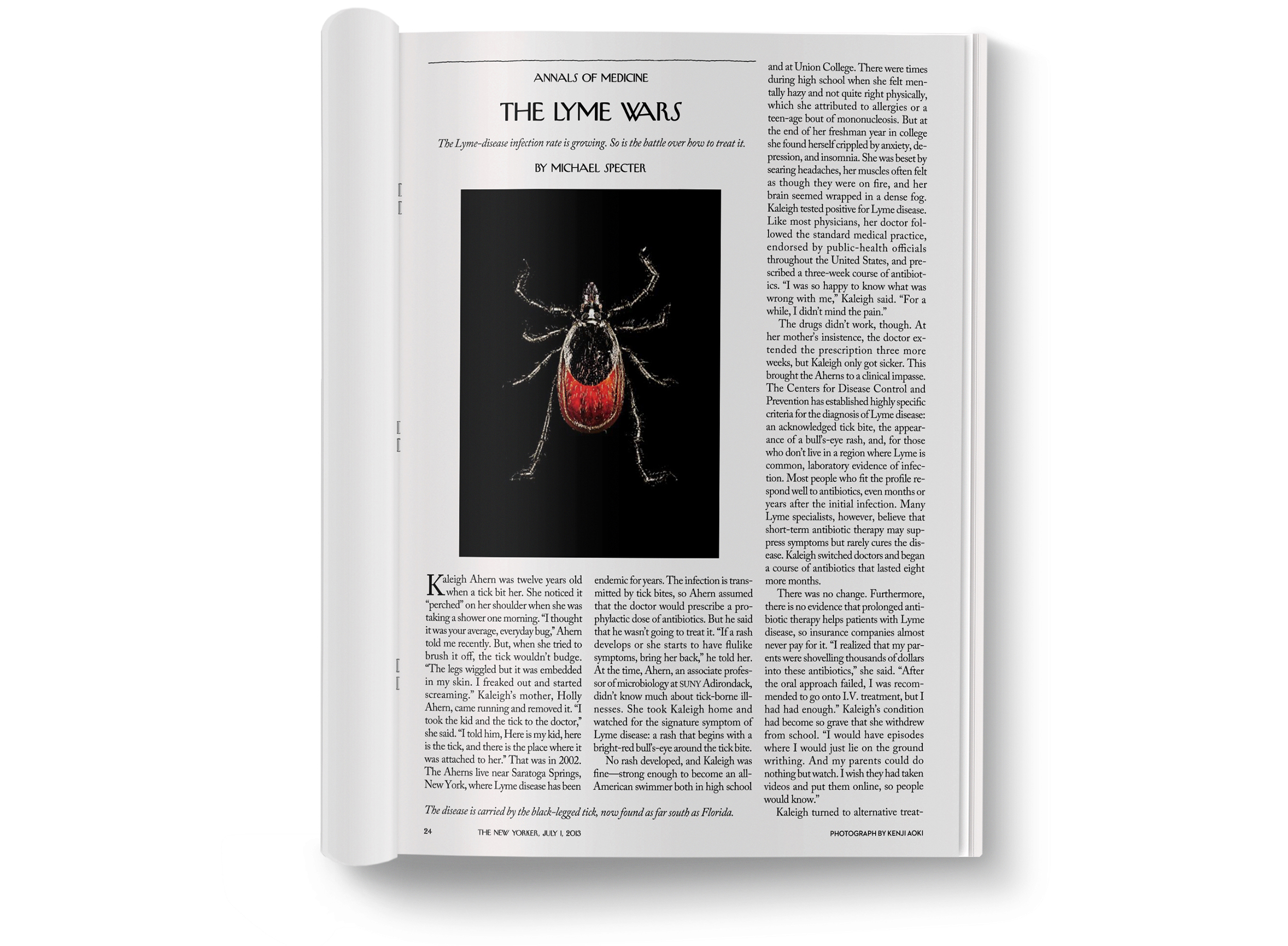 The Lyme Wars  photographed by  Kenji Aoki .