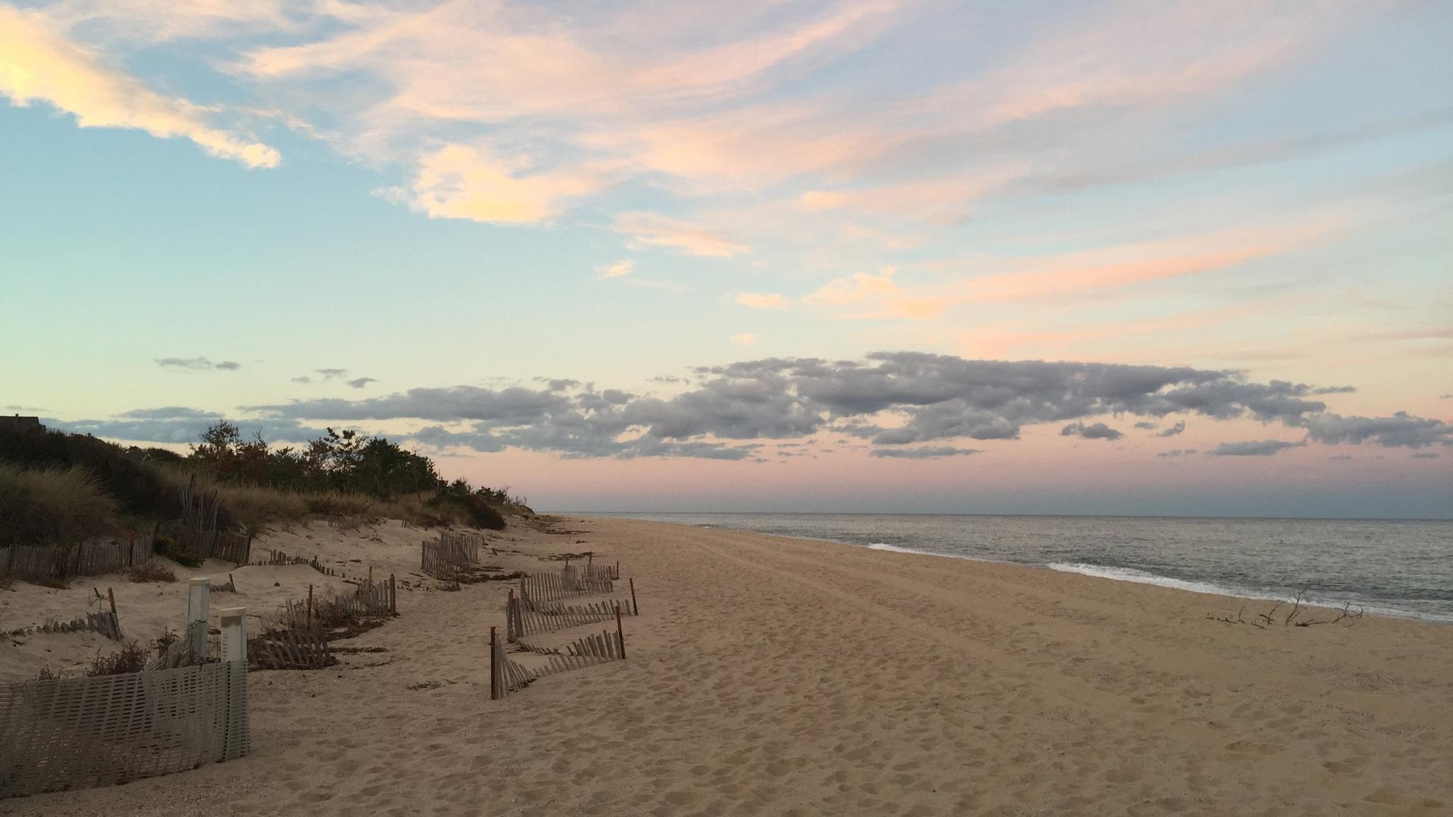 nyt-beach.jpg