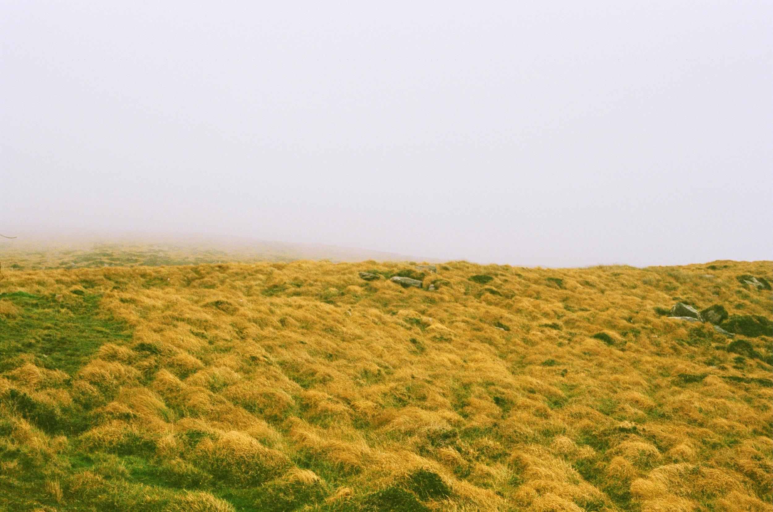 Field with fog, 35mm, Cill Rialaig, 2015