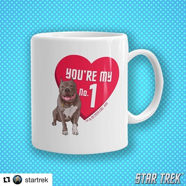 A few Valentine's Day ideas for the #StarTrek fan in your life. ❤️ shop.startrek.com  #ValentinesDay #No1 #makeitso