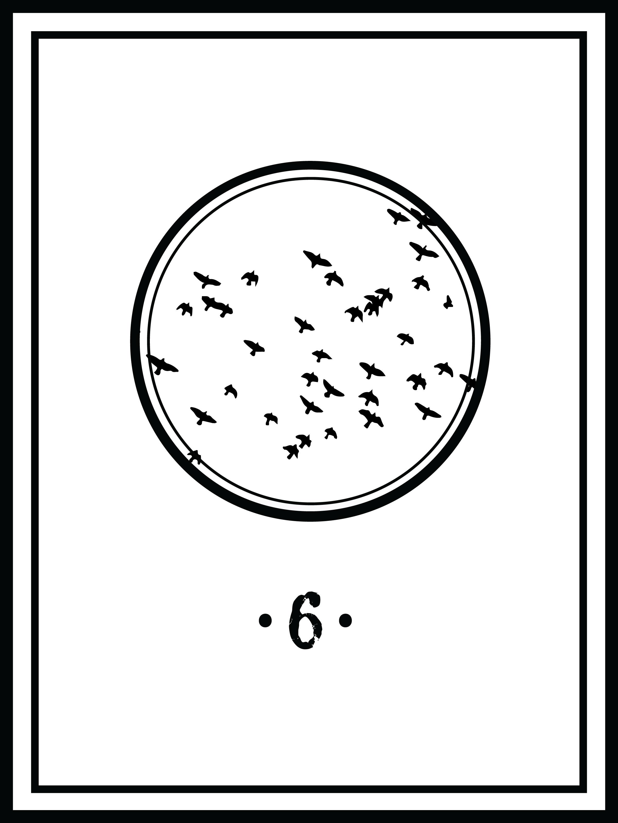 Sistren-Chapter-6.jpg