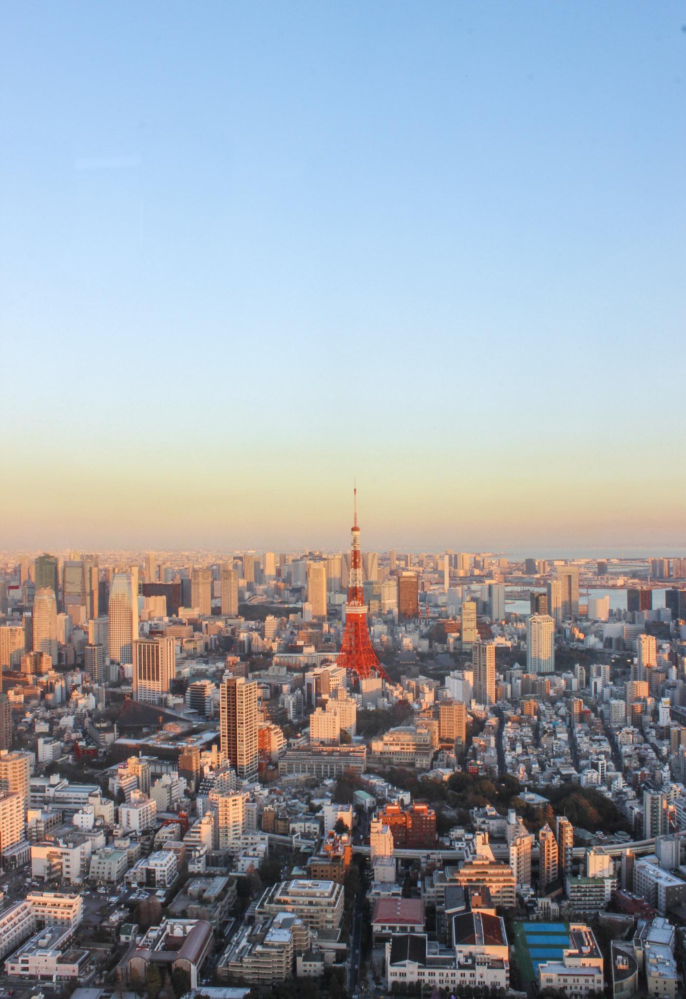 curio.trips.tokyo.tower.dusk.jpg