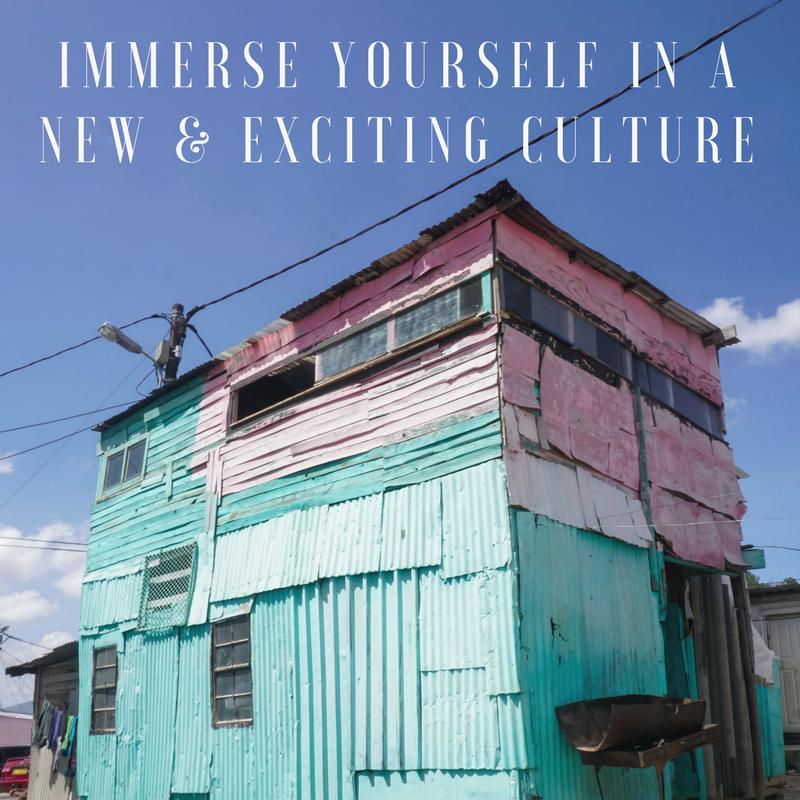 Curio Trips Experiences - Culture.png