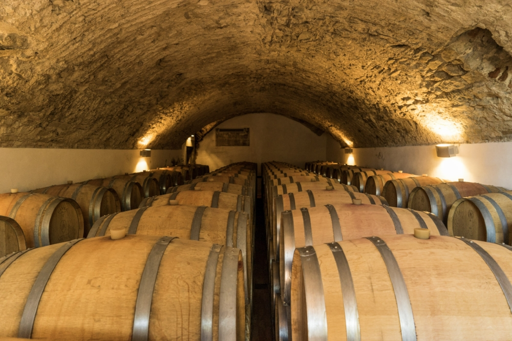 curio.trips.italy.chianti.winery.cellar.jpg