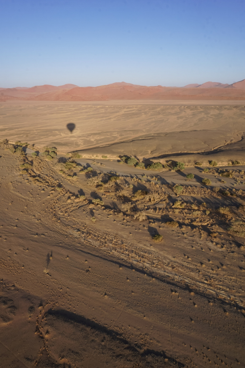 curio.trips.namibia.sossusvlei.hot.air.balloon.dunes.shadow.portrait.jpg