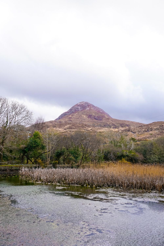 curio.trips.ireland.connemara.np.diamond.mountain.jpg