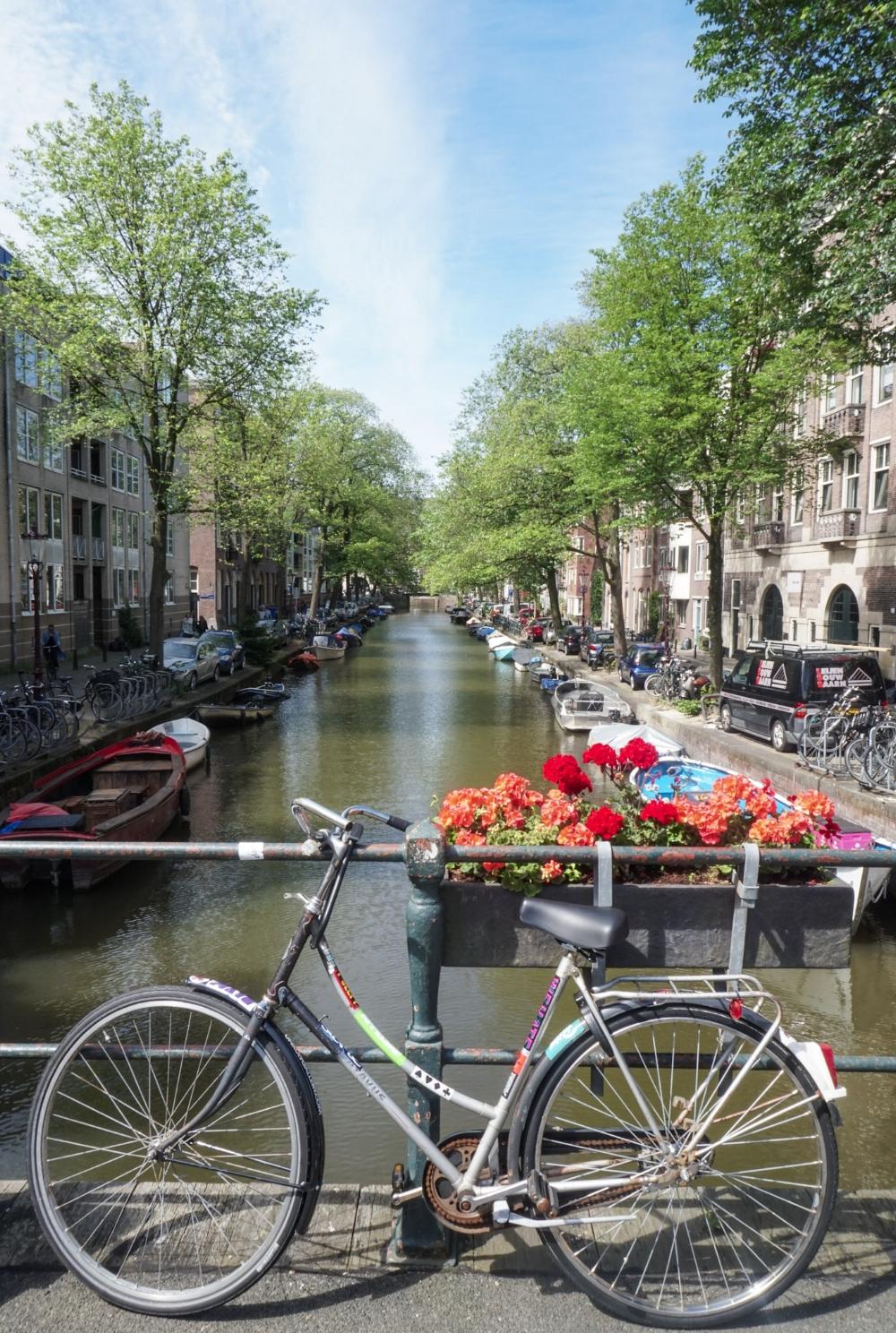 curio.trips.amsterdam.canal.bike.flowers.jpg