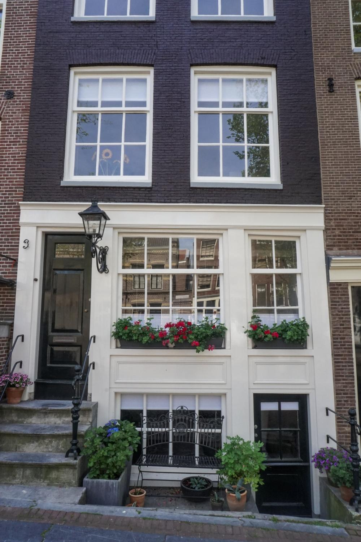 curio.trips.amsterdam.house.flowers.jpg