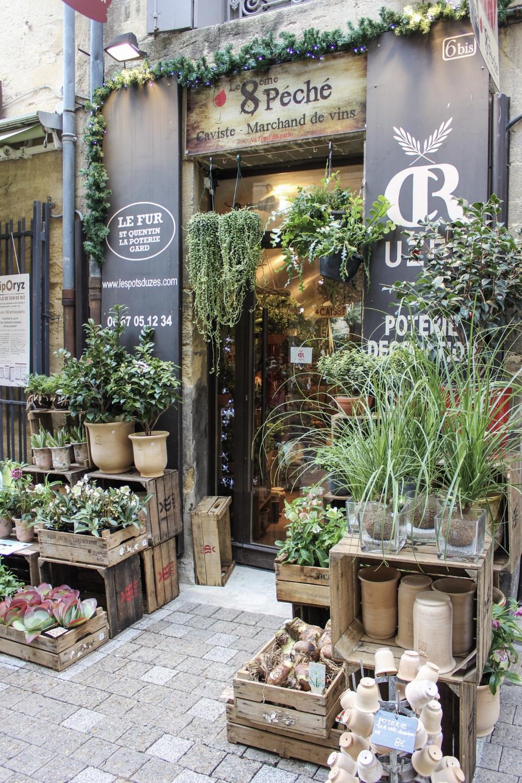 curio.trips.provence.flower.shop.jpg