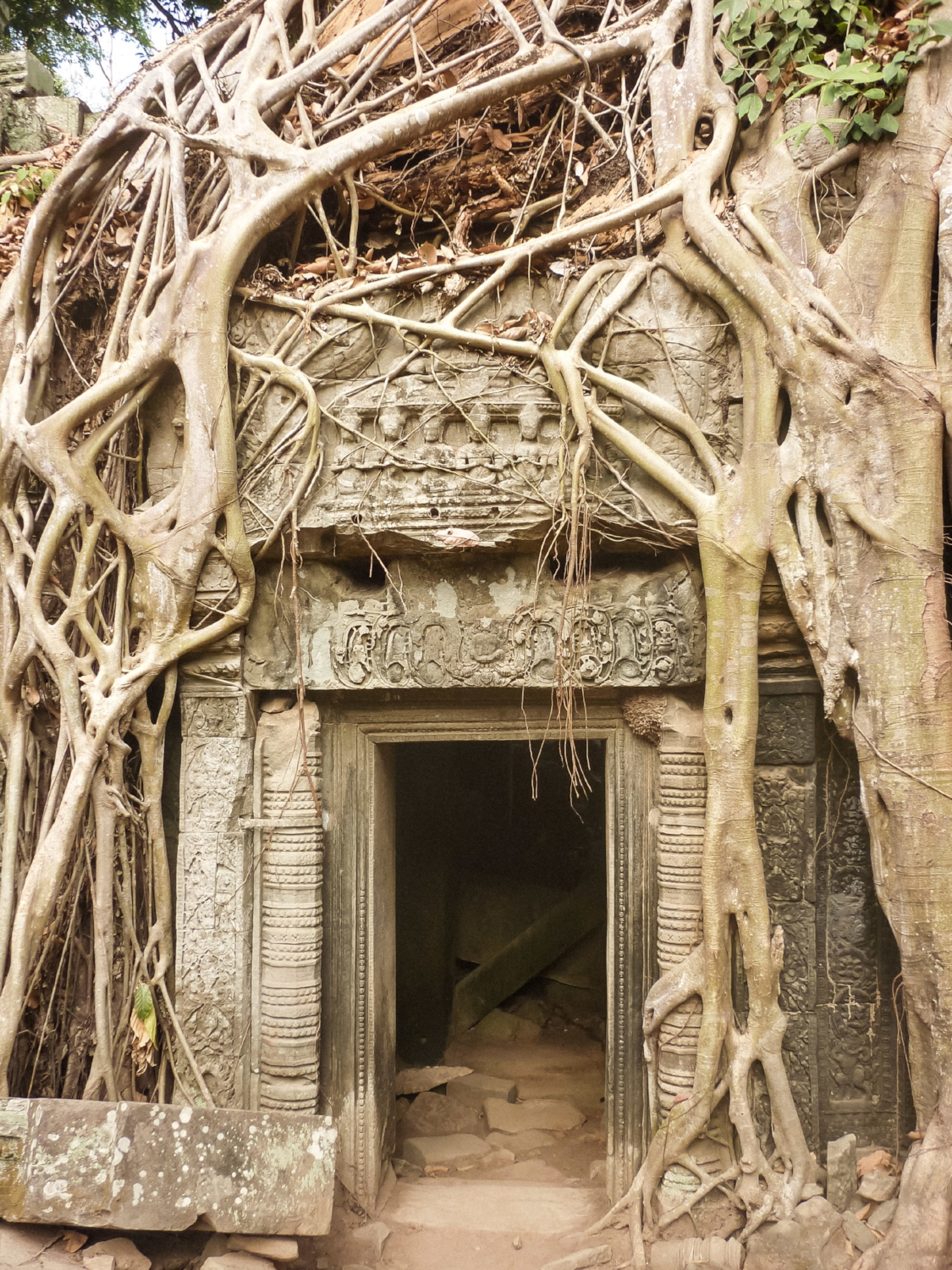 curio.trips.cambodia.siem.reap.angkor.wat.tomb.rader.temple.jpg