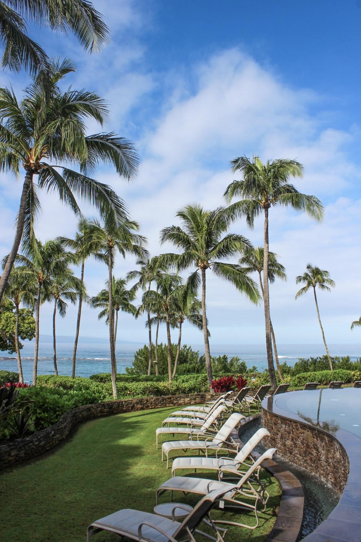 curio.trips.hawaii.maui.hotel.pool.jpg