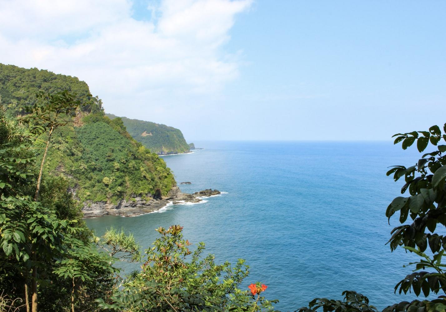curio.trips.hawaii.maui.hana.coastline.jpg