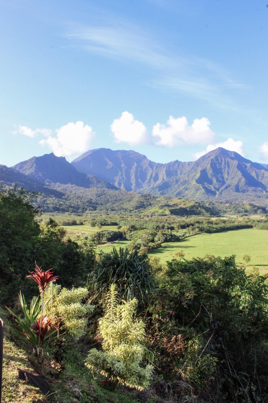 curio.trips.hawaii.kauai.views.jpg