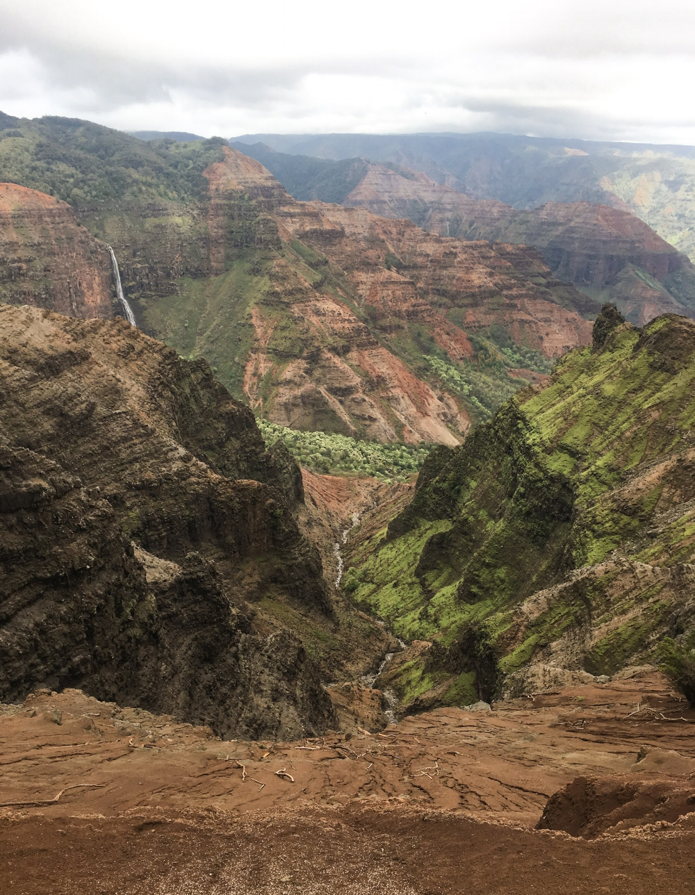 curio.trips.hawaii.kauai.canyon.jpg
