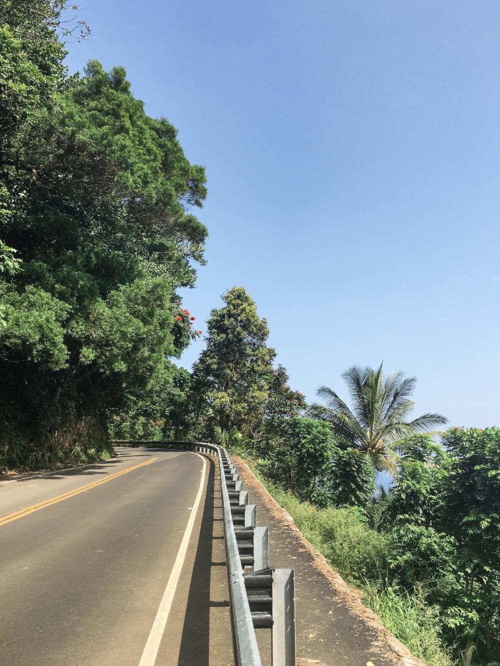 curio.trips.hawaii.maui.hana.highway.jpg