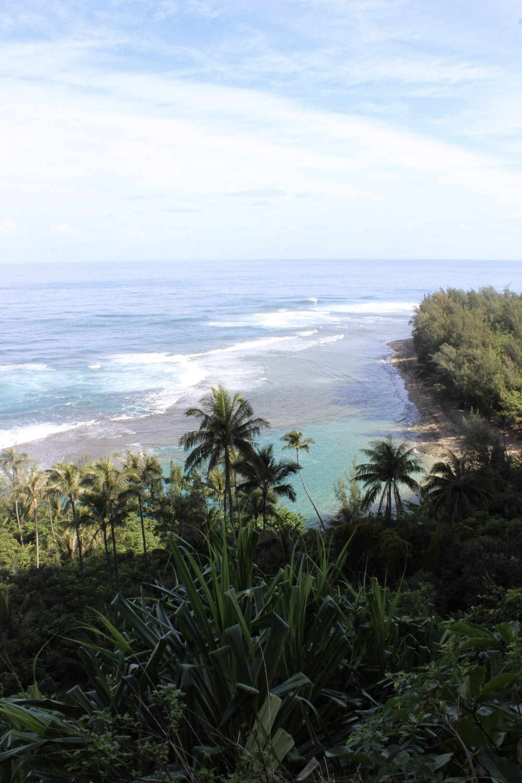 curio.trips.hawaii.kauai.hike.beach.jpg