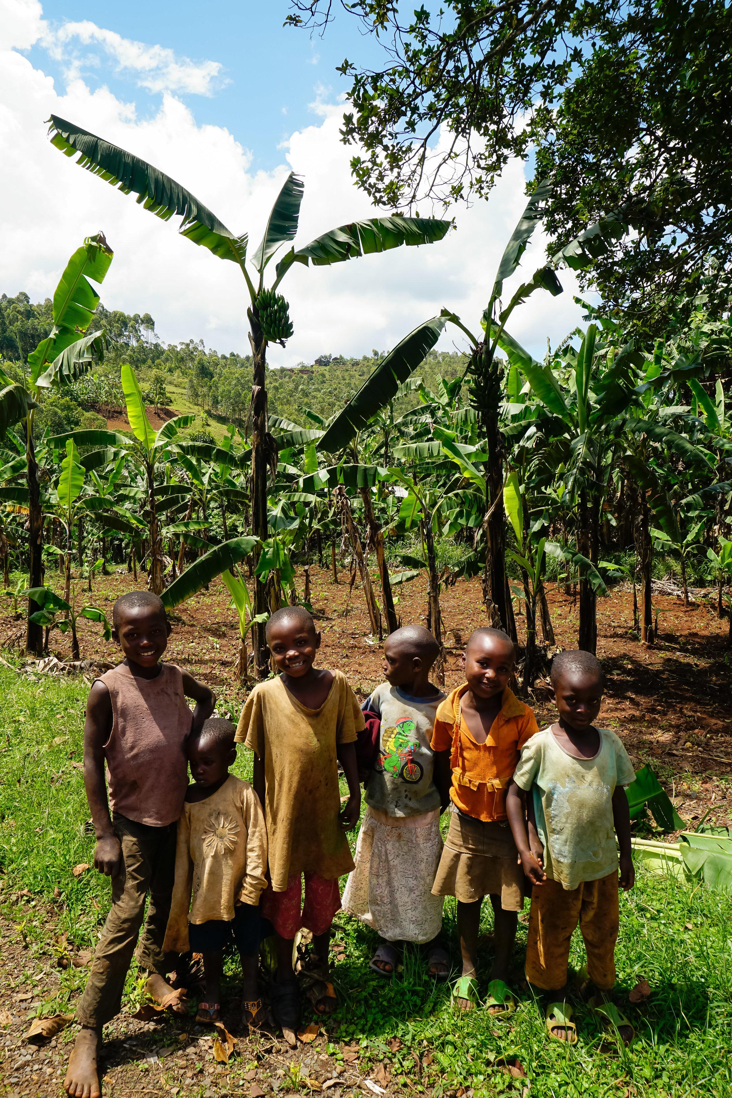 curio.trips.rwanda.nyungwe.np.children.IG.story.jpg