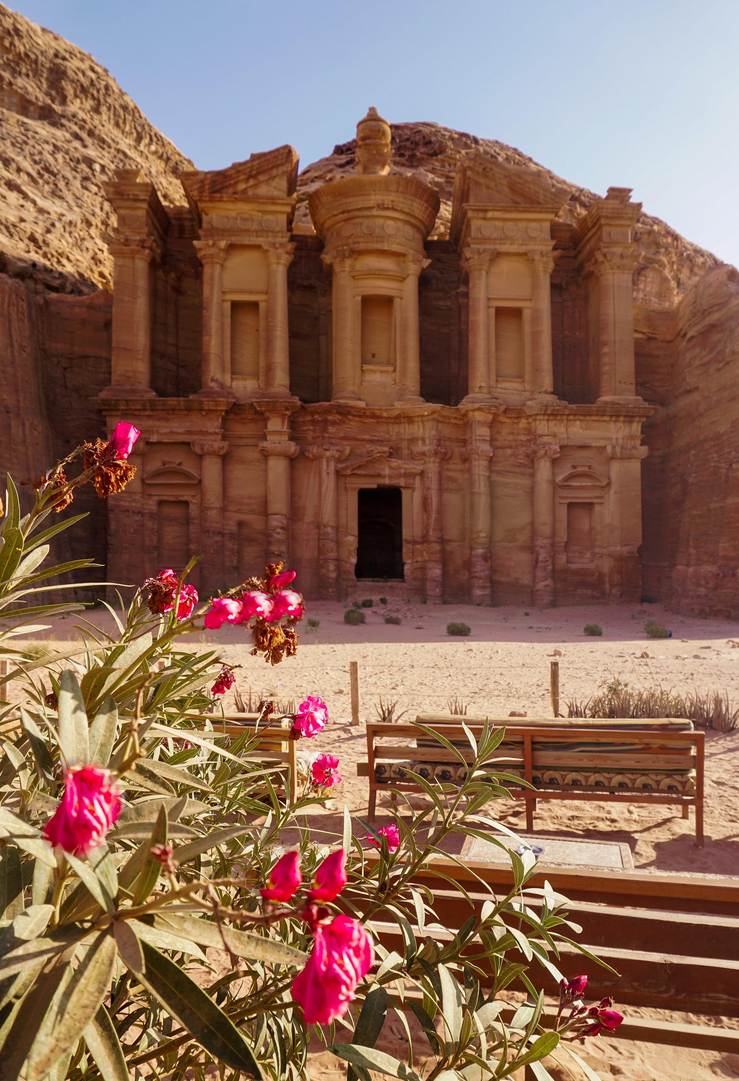 curio.trips.jordan.petra.monastery.pink.flowers.portrait.jpg
