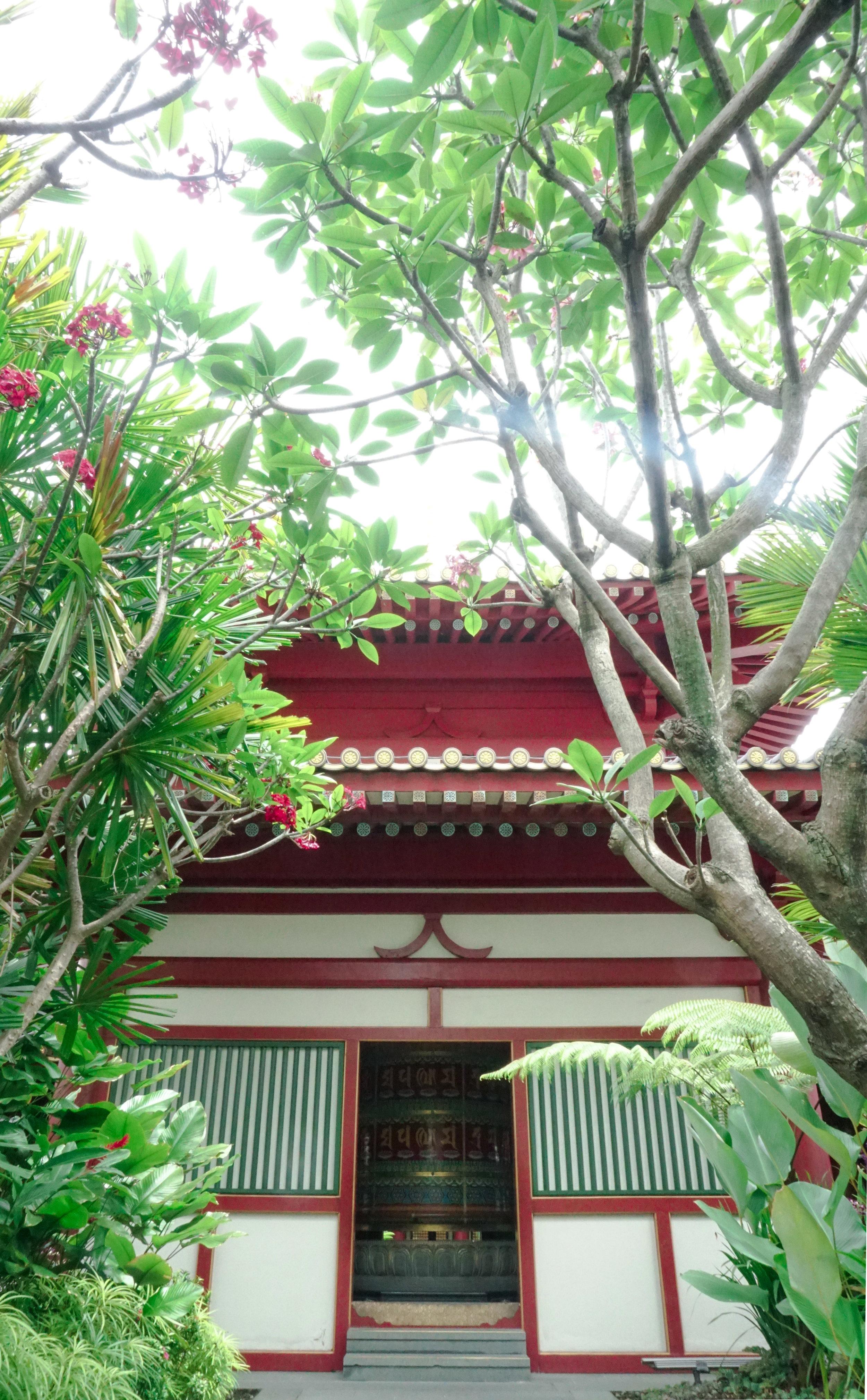curio.trips.singapore.temple.rooftop.garden.portrait.jpg