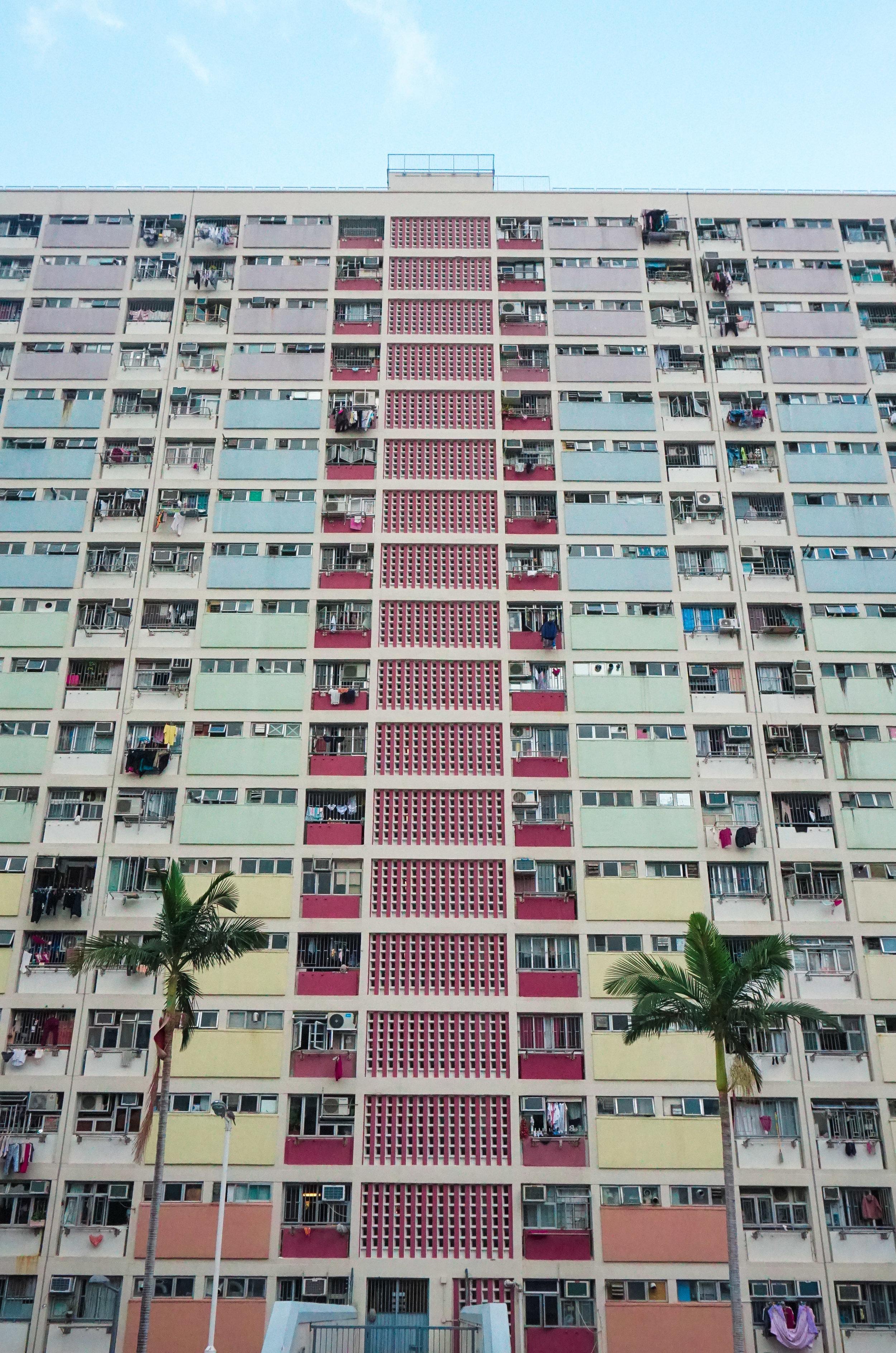 curio.trips.hong.kong.colourful.basketball.building.palm.trees.portrait-2.jpg