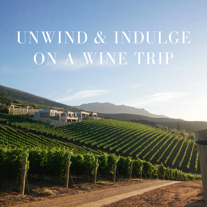 curio.trips.website.experiences.wine.trips.png