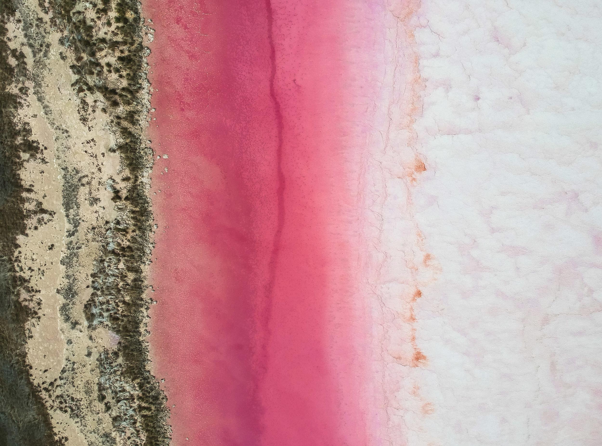 curio.trips.australia.western.pink.lagoon.river.drone.jpg