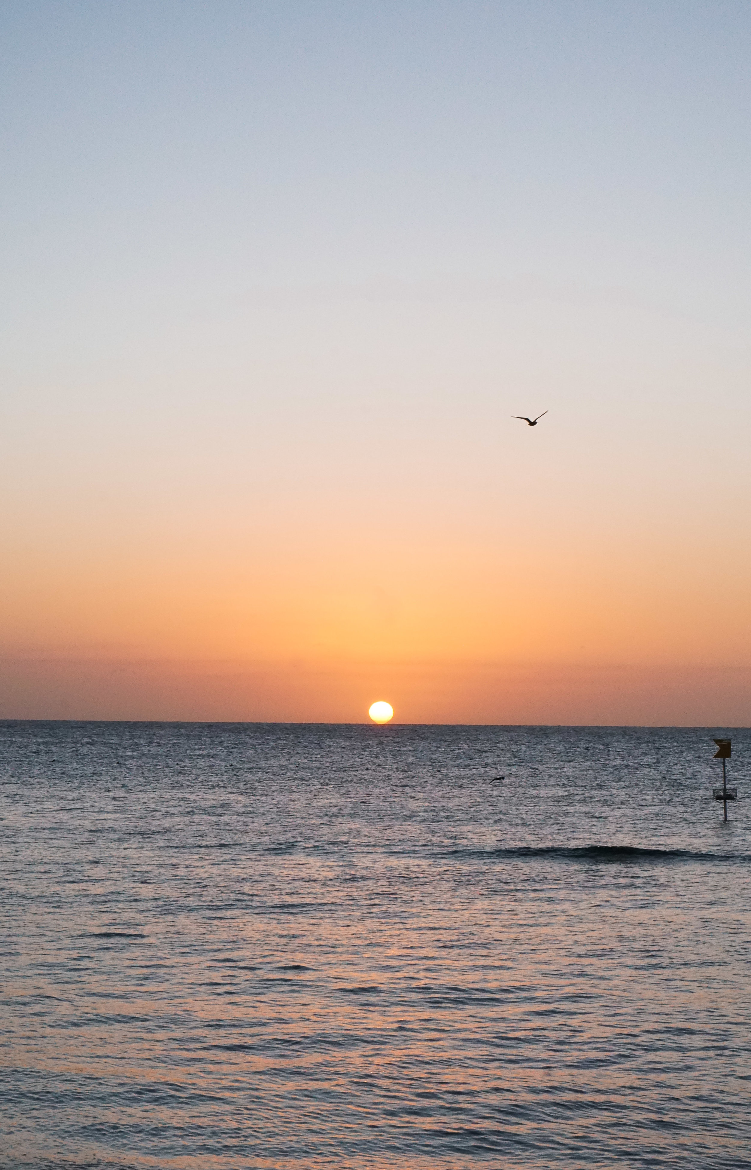 curio.trips.australia.great.barrier.reef.sunset.portrait.jpg