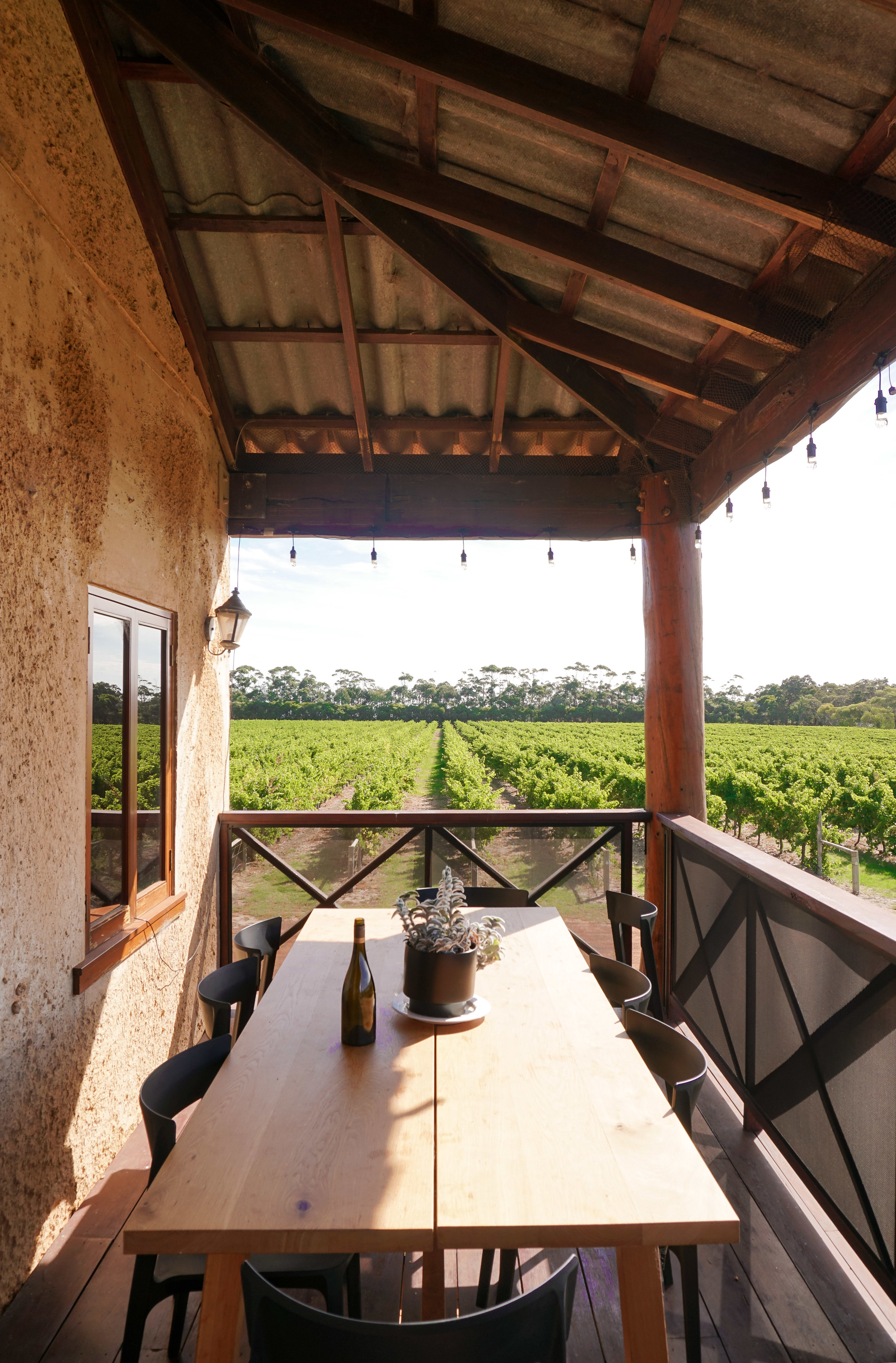 curio.trips.australia.western.winery.vineyard.portrait.jpg