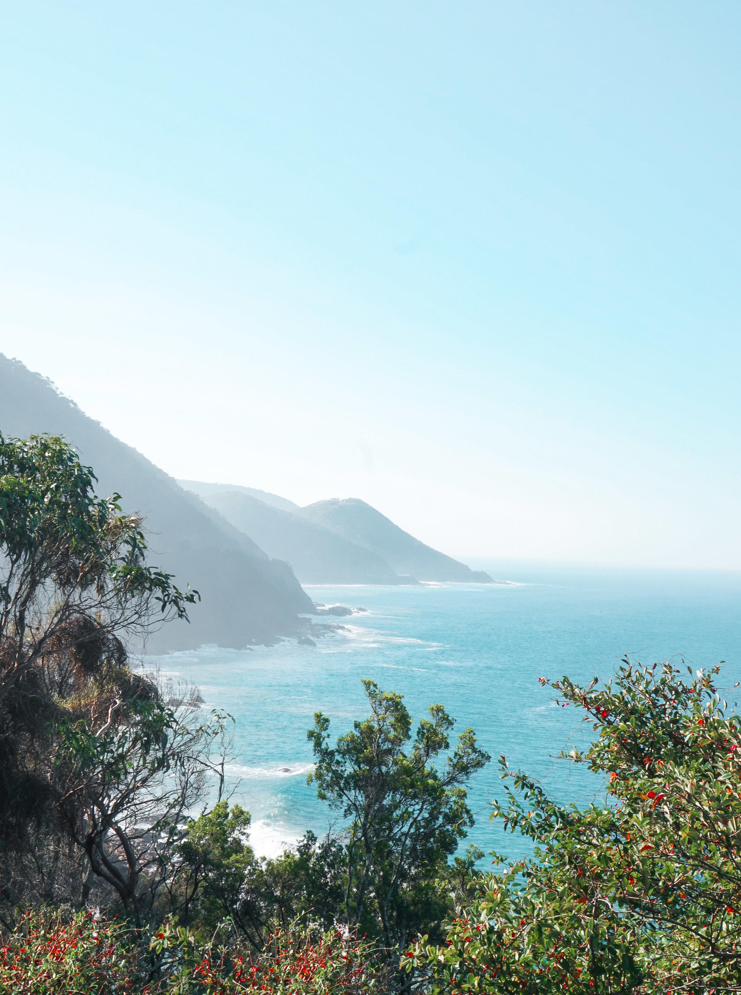 curio.trips.australia.victoria.great.ocean.road.view.portrait.jpg