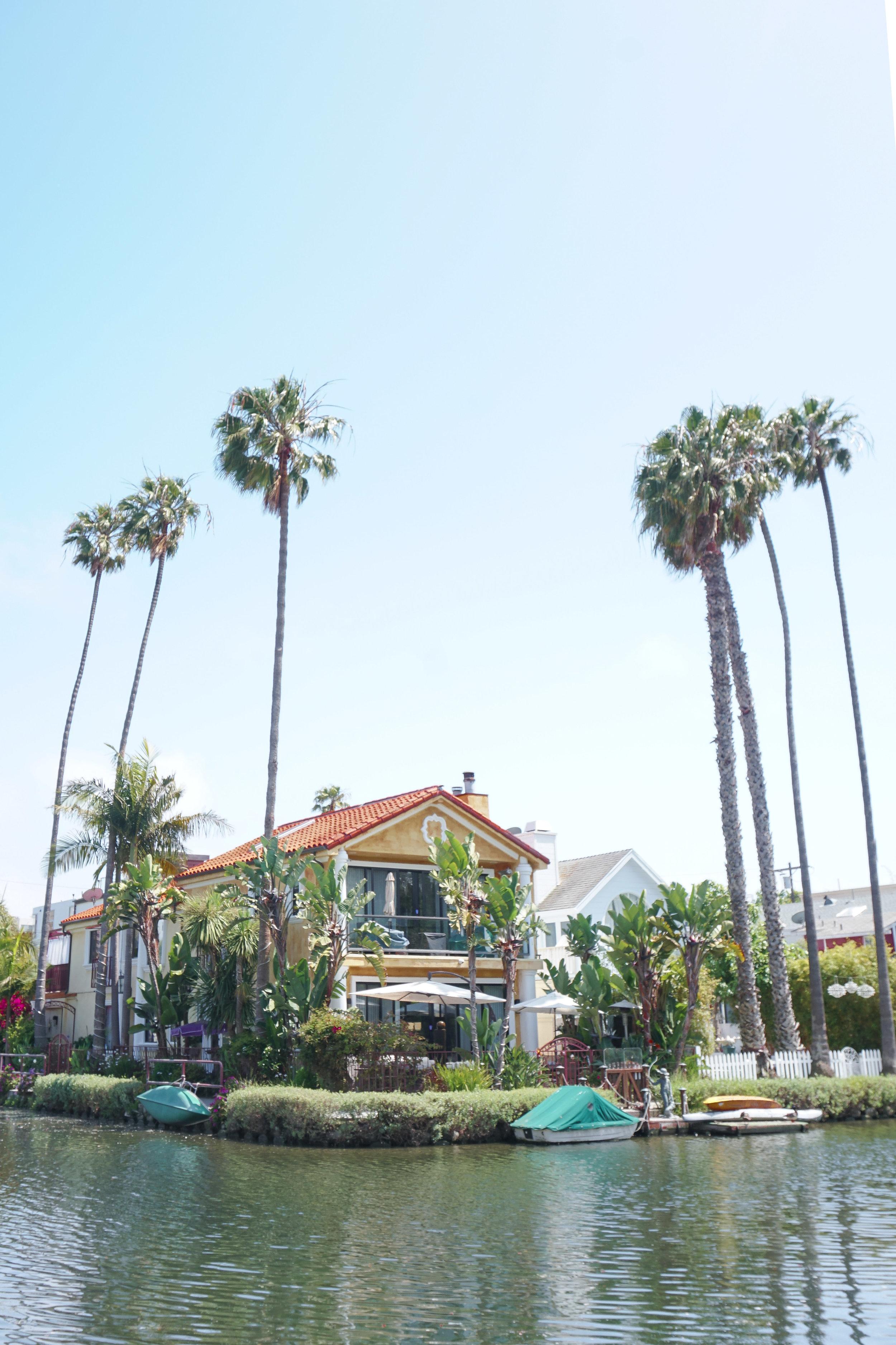curio.trips.usa.california.los.angeles.venice.canals.corner.house.palm.trees.portrait.jpg