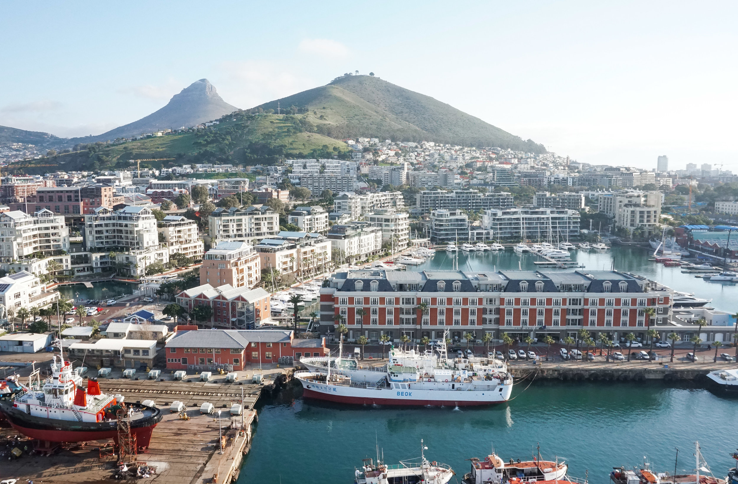 curio.trips.south.africa.cape.town.rooftop.view.landscape.jpg