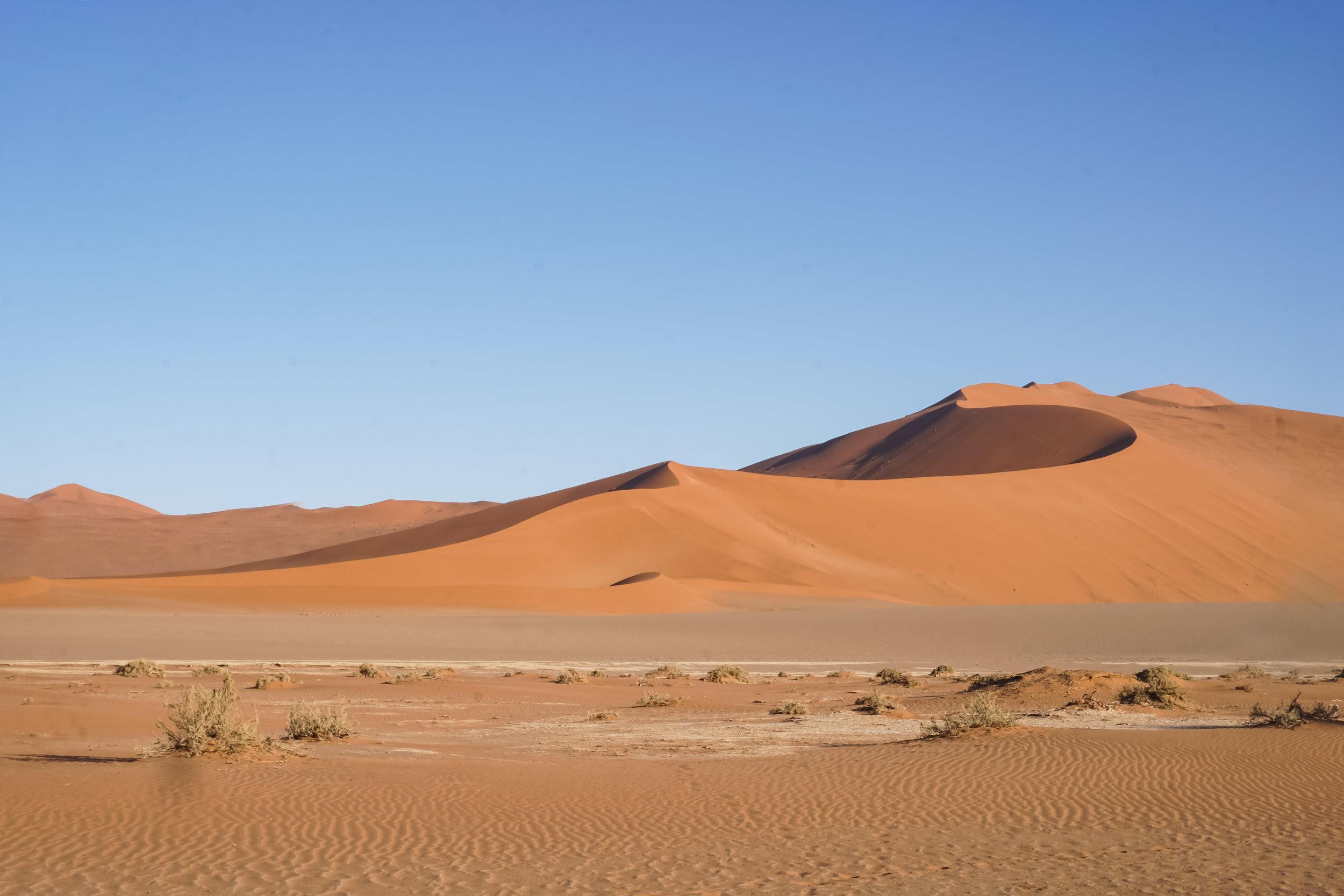 curio.trips.namibia.sossusvlei.red.dunes.landscape.jpg