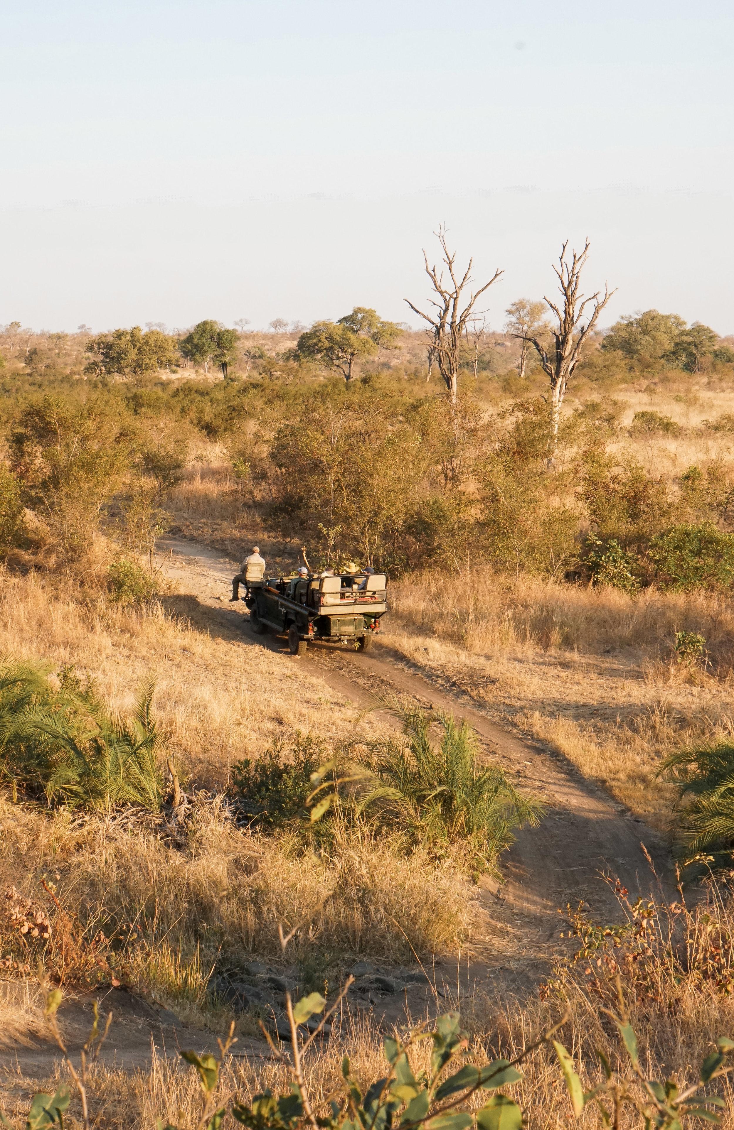 curio.trips.south.africa.safari.truck.sunset.portrait.jpg