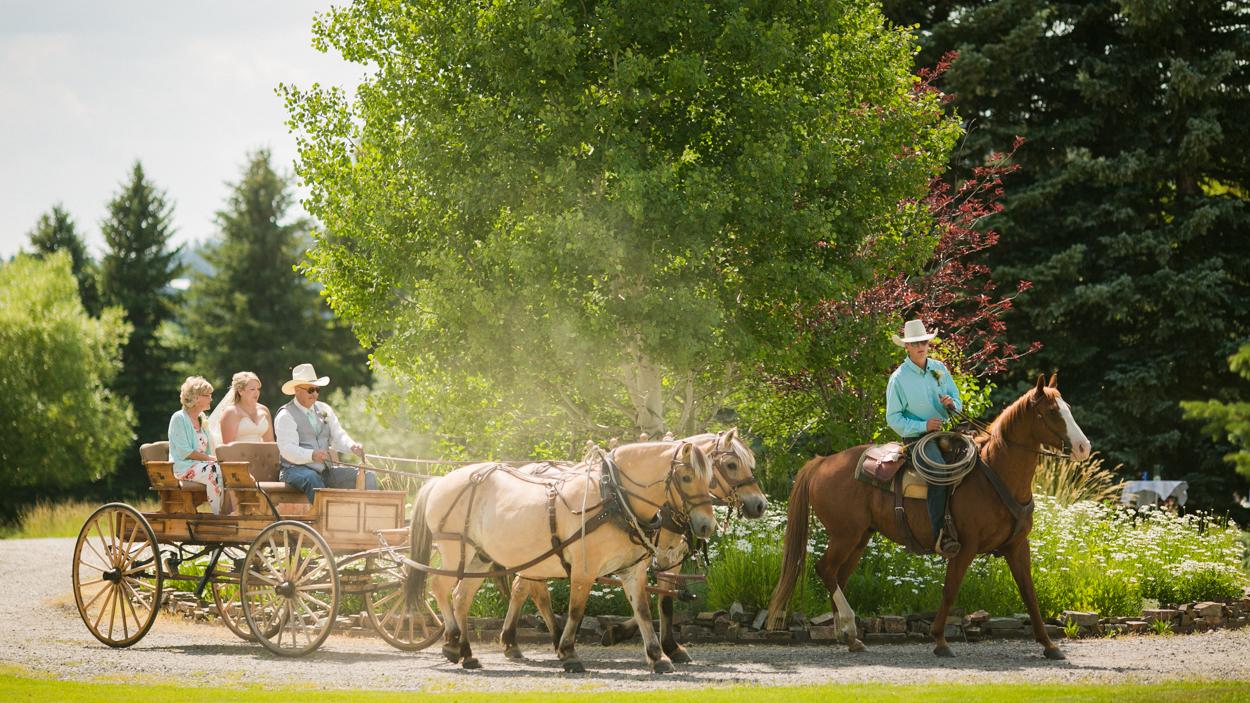 Bride in a horse drawn buggy, western Montana wedding.