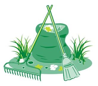 clean-green.jpg