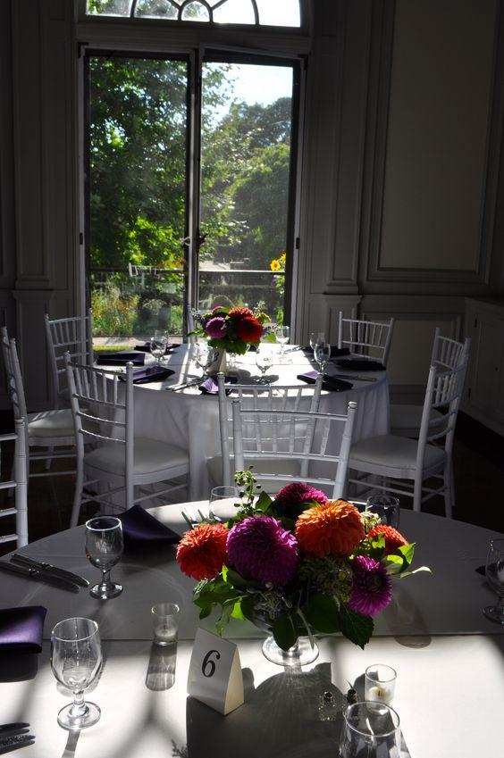 dining room view of garden .jpg