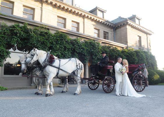 horse drawn carriage ride .jpg