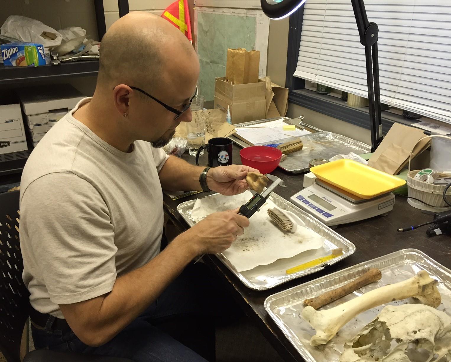 Bone identification.jpg