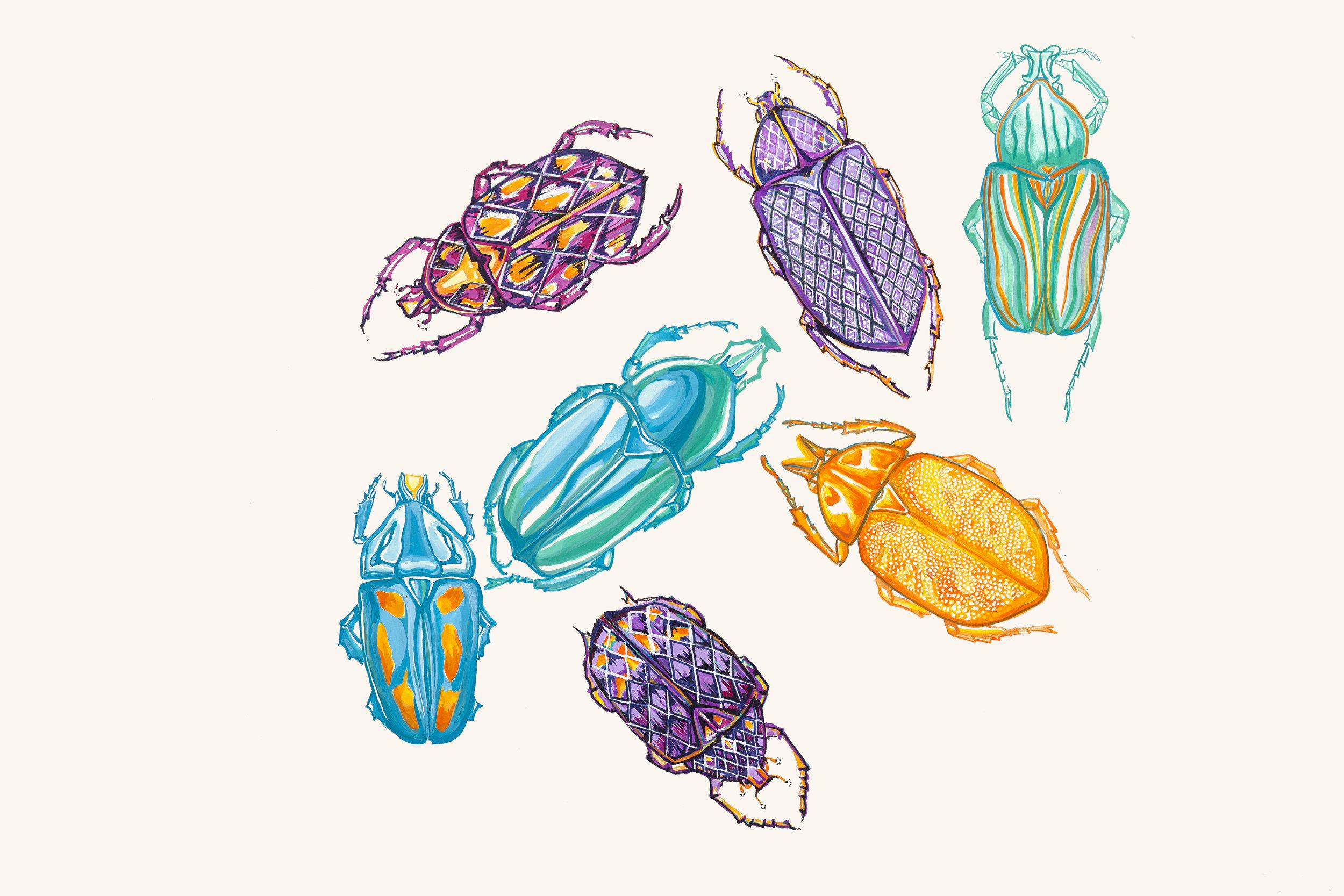 estudo de insetos e padrões para estampa  botânica  [guache]