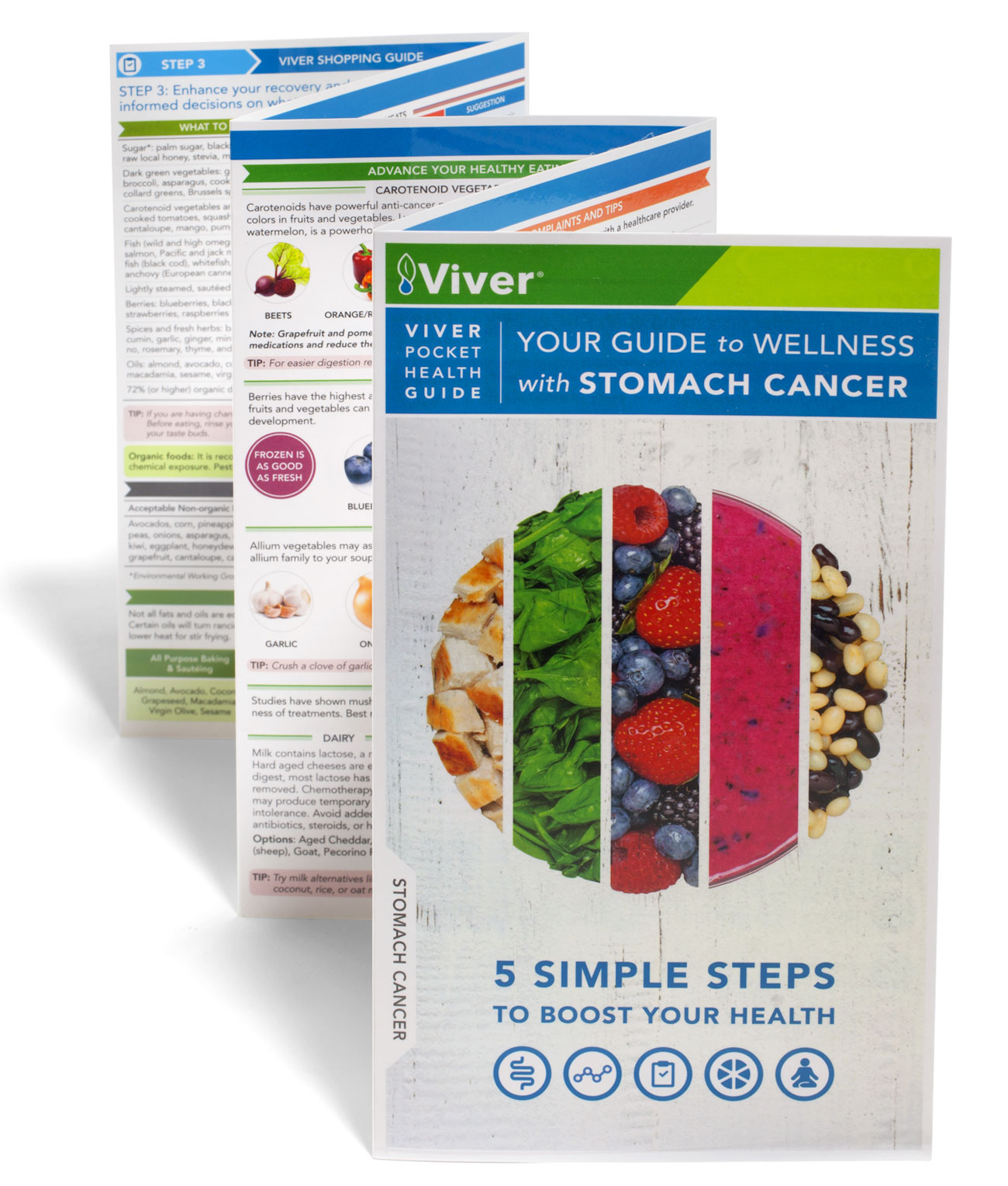 Your Guide to Wellness with Stomach Cancer is supported by Lilly USA and free for patients and care givers