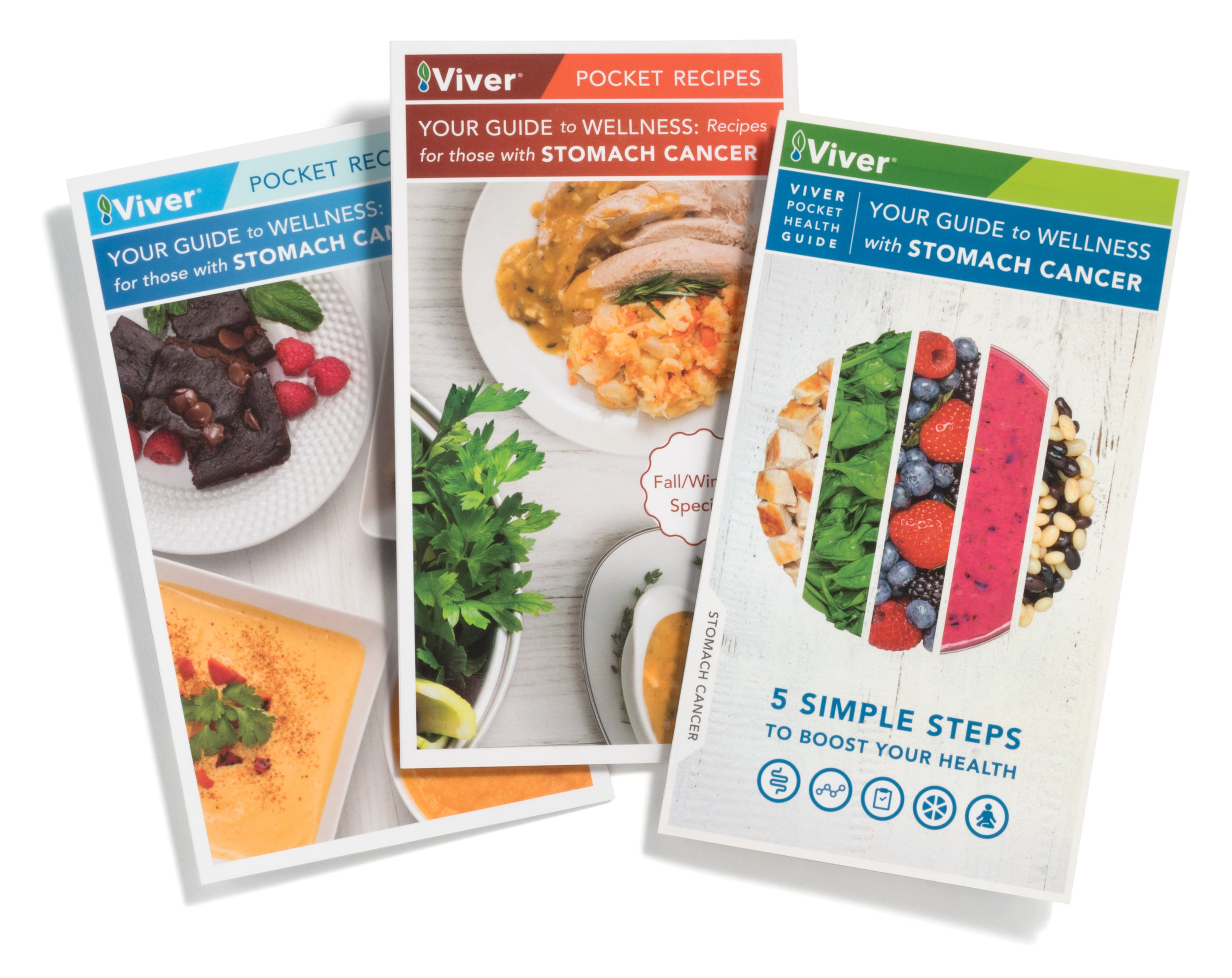 Viver Health Your Guide to Wellness with Stomach Cancer.jpg