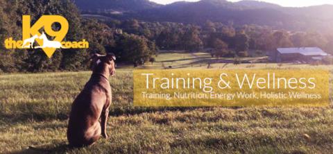 Dana Brigman  Dog Training & Wellness Expert  Dog Training, Behavior and Wellness Expert Nutrition, Essential Oils, Holistic Animal Care, Homeopathy & Energy Healing