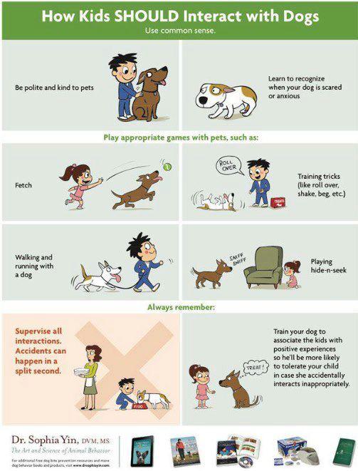 greetdog (2).jpg