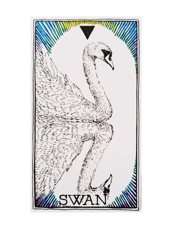 SWAN, from the Wild Unknown Animal Spirit Deck, written and illustrated by Kim Krans.