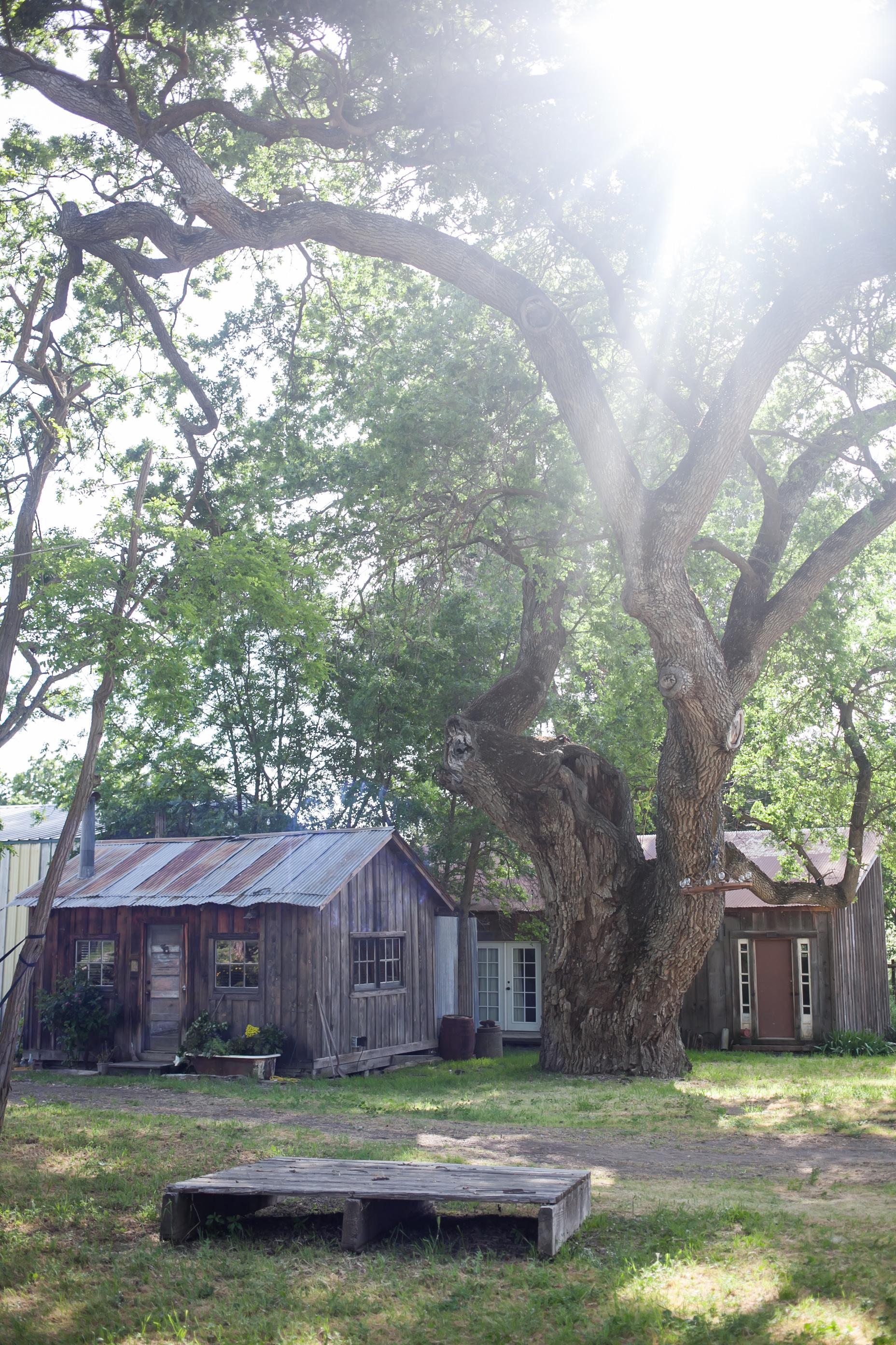 Reinstein Ranch (417).jpg