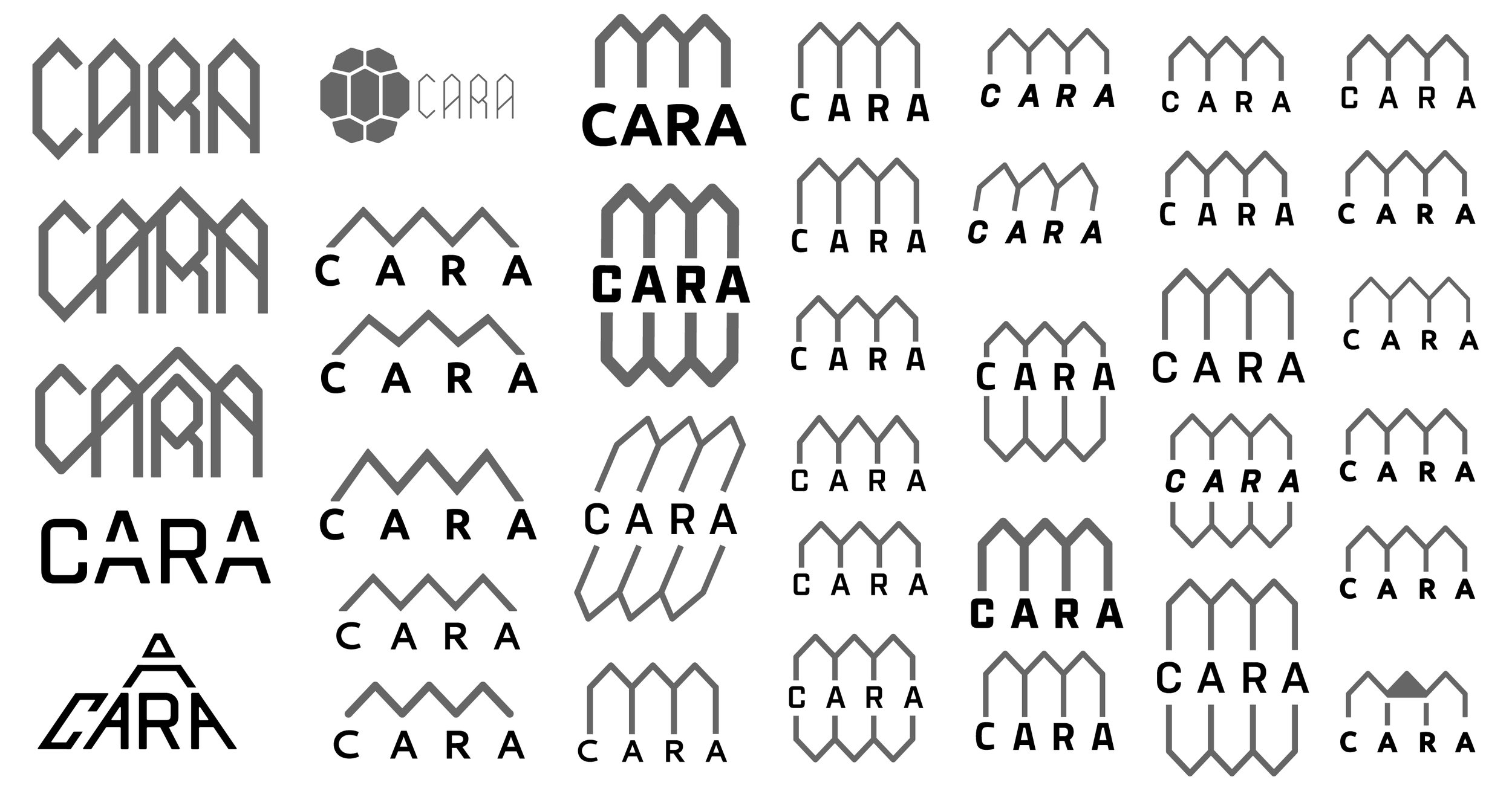 CARA_LOGO_PROGRETION-10.jpg