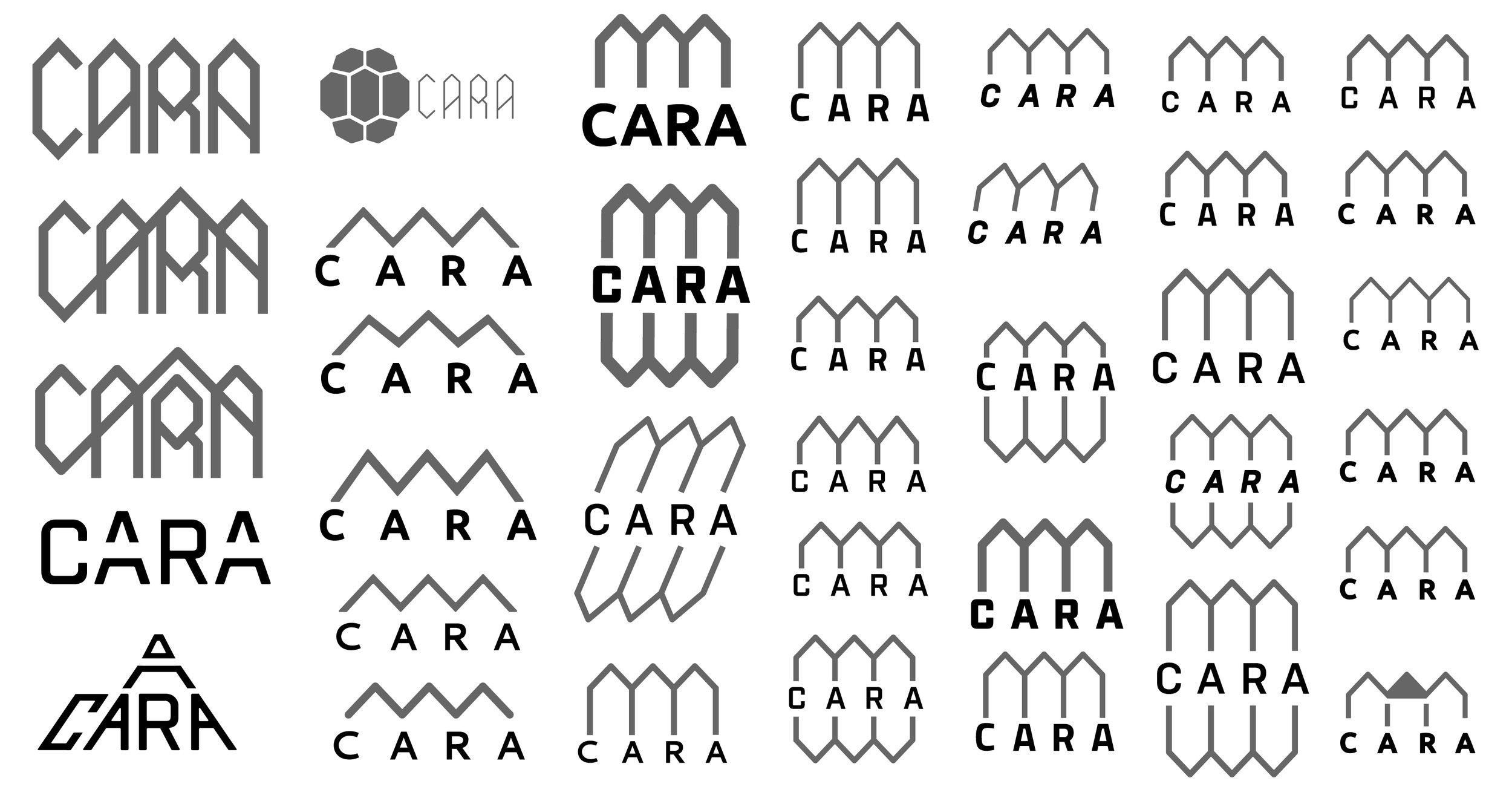 CARA_LOGO_PROGRETION-10.jpg