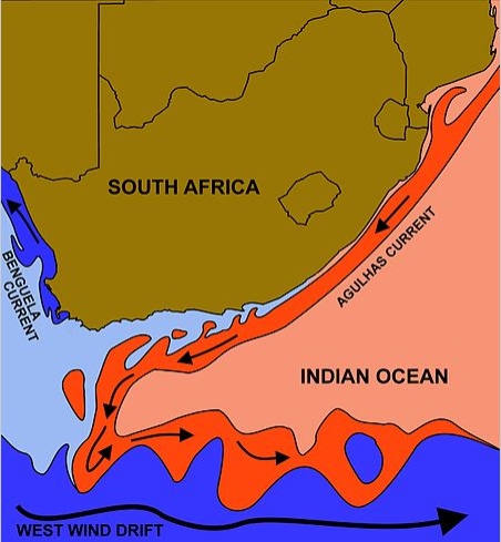 this image obtained courtesy of Wikipedia Commons:  https://en.wikipedia.org/wiki/Agulhas_Current