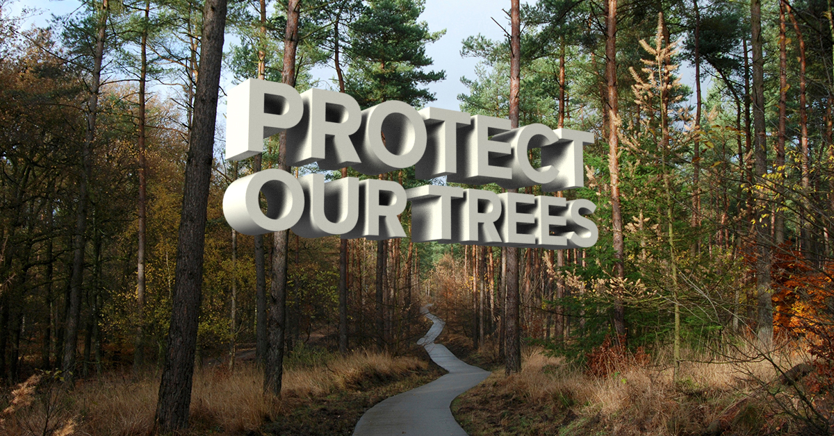 Protect_Our_Trees.jpg