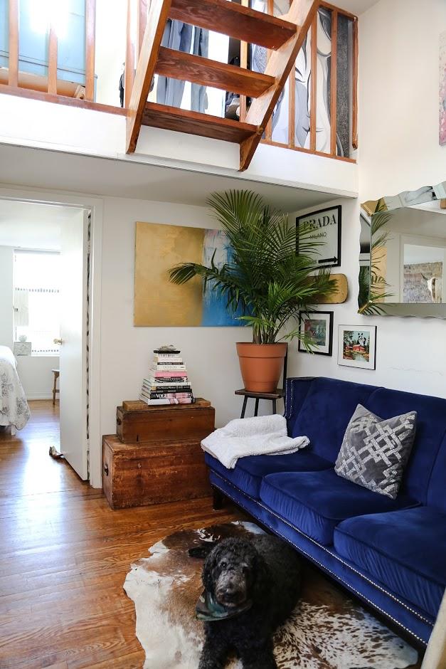 Living room with dog.jpg